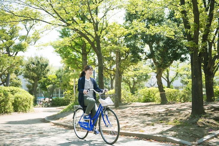 株式会社ケアリッツ・アンド・パートナーズ ケアリッツ昭島の求人画像