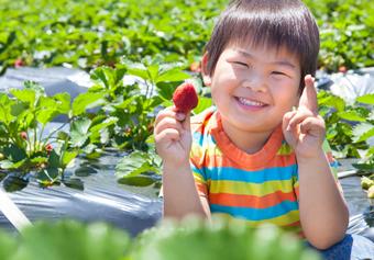 株式会社BUY THE WAY 祖師谷わかば保育園(RdQDJ_w1)の求人画像